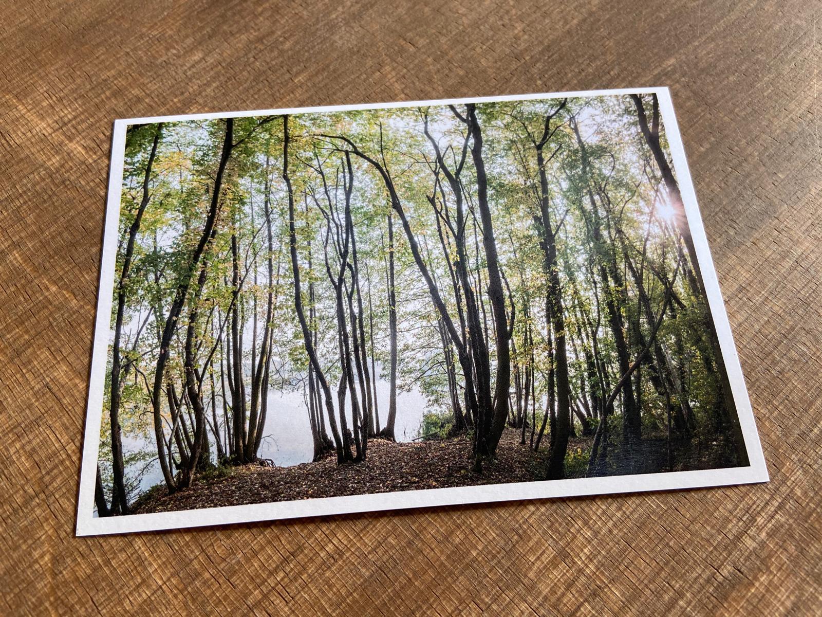 Postkarte Andre Wagner